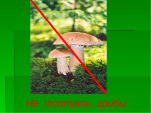 Не топтать грибы.
