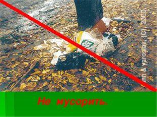 Не мусорить.