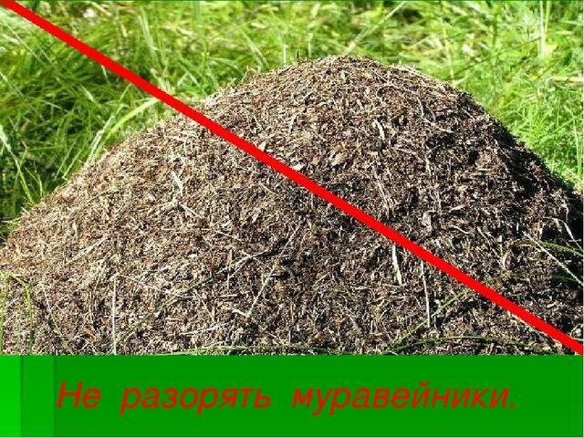Не разорять муравейники.