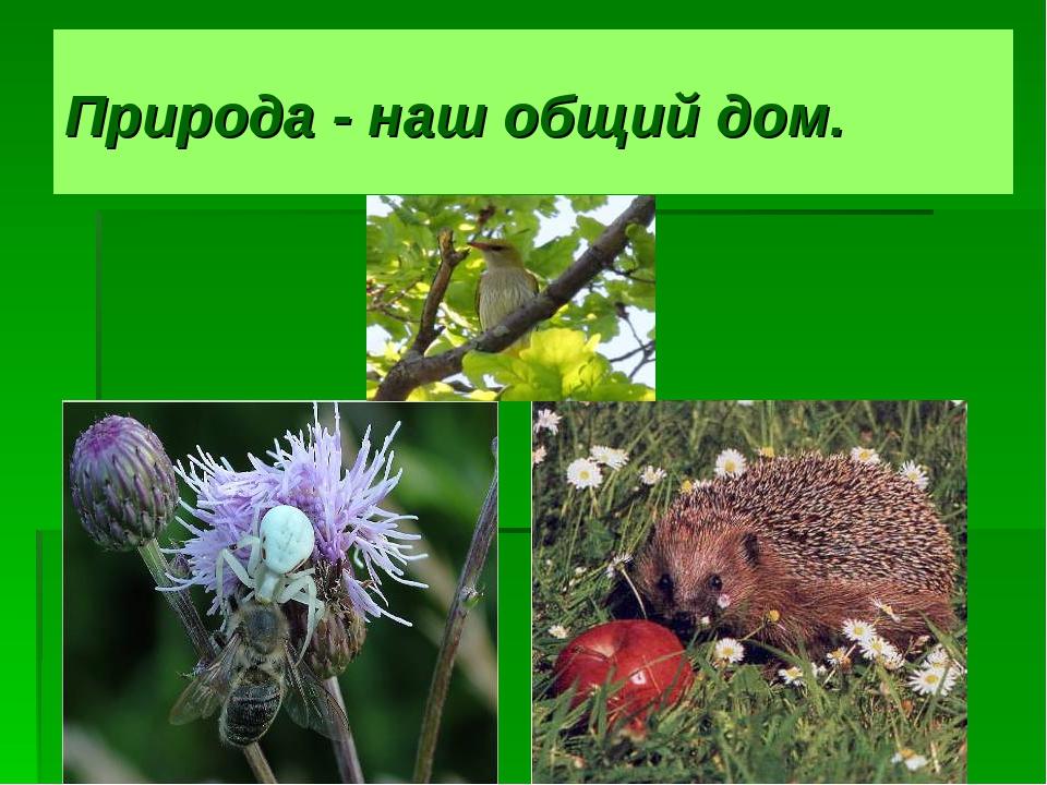 Природа - наш общий дом.