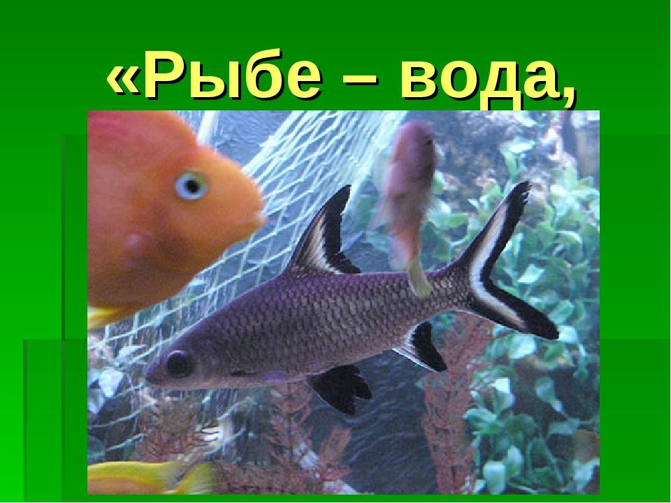 «Рыбе – вода,