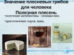 получение антибиотика - пенициллин; приготовление сыров, вина. Значение плесн