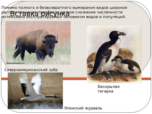 Помимо полного и безвозвратного вымирания видов широкое распространение приоб...
