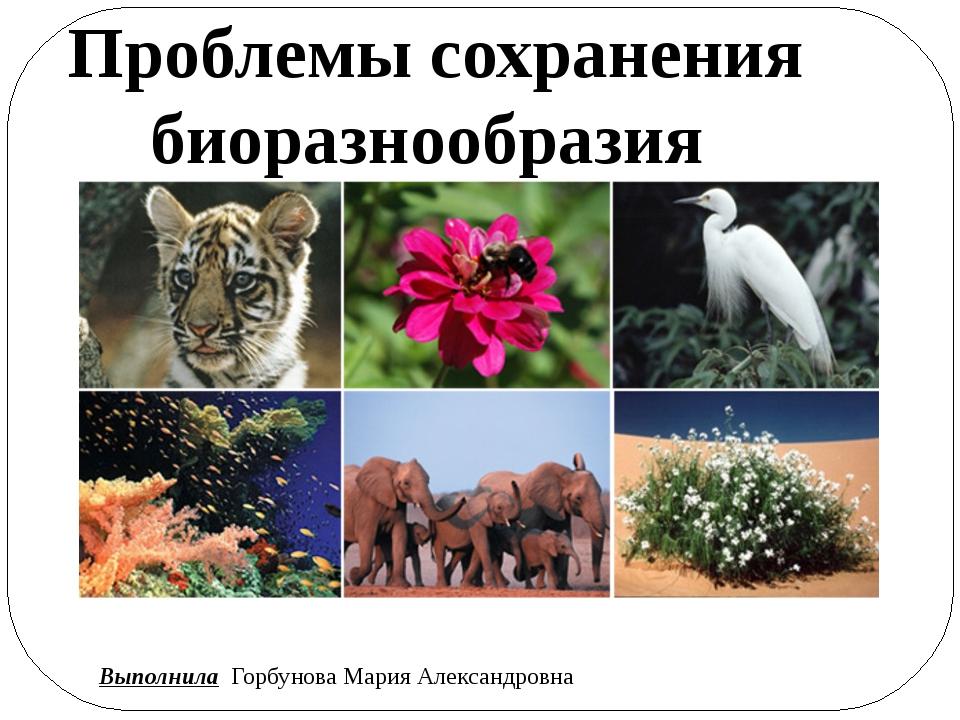 Проблемы сохранения биоразнообразия Выполнила Горбунова Мария Александровна