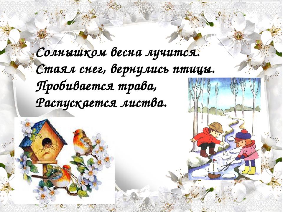 Солнышком весна лучится. Стаял снег, вернулись птицы. Пробивается трава, Рас...