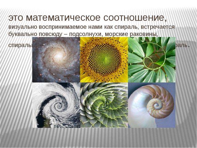 это математическое соотношение, визуально воспринимаемое нами как спираль, вс...