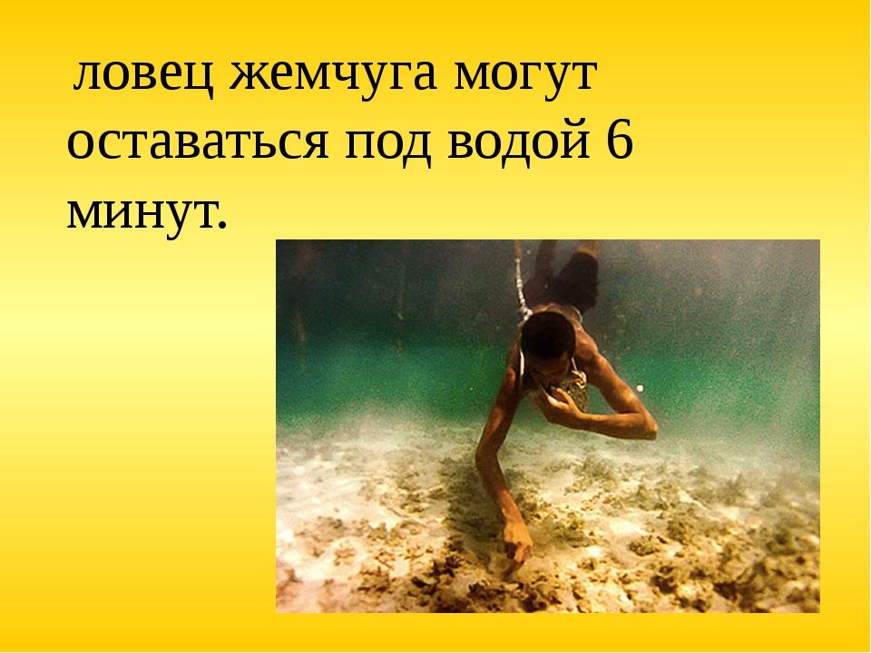 ловец жемчуга могут оставаться под водой 6 минут.