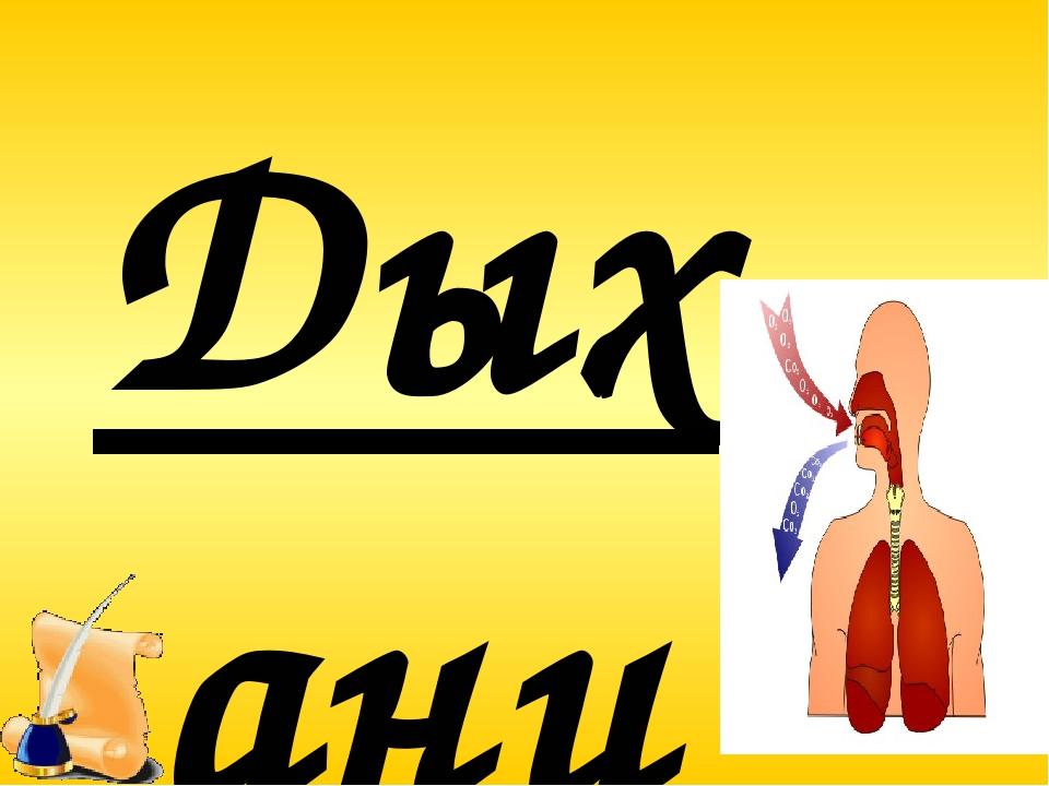Дыхание это совокупность процессов, обеспечивающих поступление кислорода, исп...