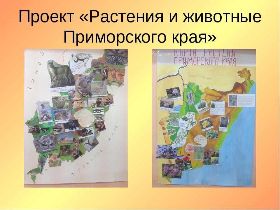 Проект «Растения и животные Приморского края»