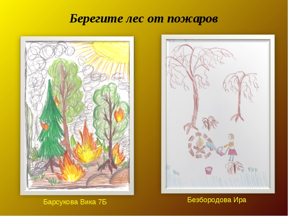 Берегите лес от пожаров Безбородова Ира Барсукова Вика 7Б