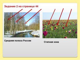 Задание 2 на странице 44 Средняя полоса России Степная зона