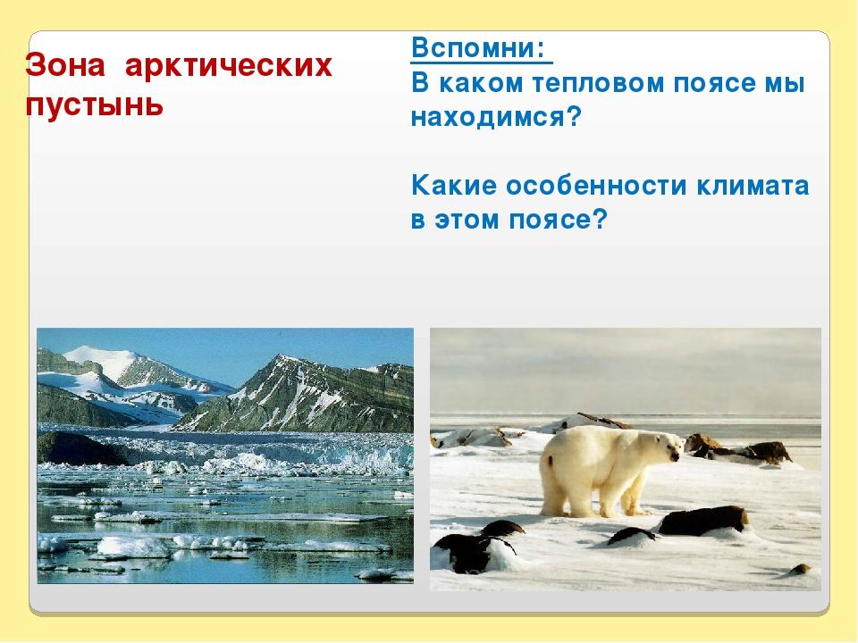 Вспомни: В каком тепловом поясе мы находимся? Какие особенности климата в это...