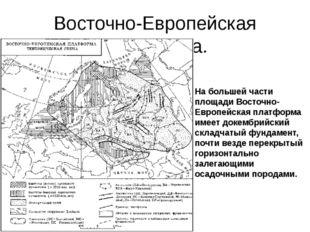 Восточно-Европейская платформа. На большей части площади Восточно-Европейская