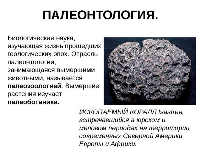 ПАЛЕОНТОЛОГИЯ. Биологическая наука, изучающая жизнь прошедших геологических э...