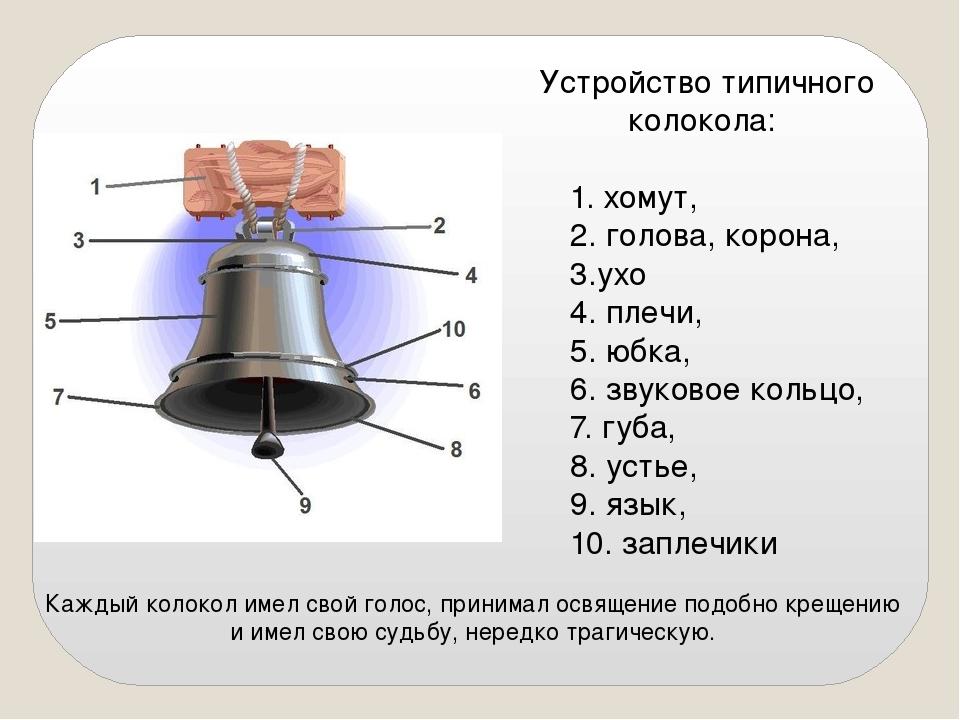 Устройство типичного колокола: 1. хомут, 2. голова, корона, 3.ухо 4. плечи,...