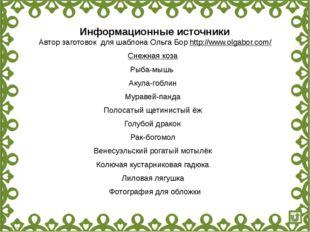 Информационные источники Автор заготовок для шаблона Ольга Бор http://www.olg