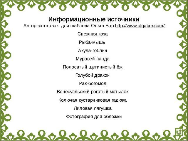 Информационные источники Автор заготовок для шаблона Ольга Бор http://www.olg...