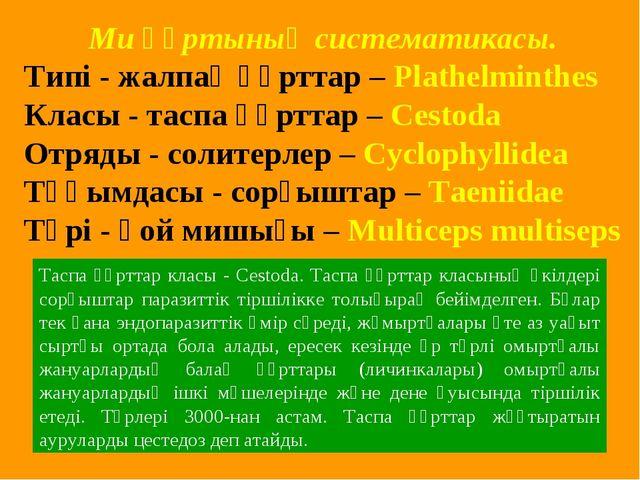 Ми құртының систематикасы. Типі - жалпақ құрттар – Plathelminthes Класы - та...