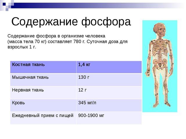Содержание фосфора Содержание фосфора в организме человека (масса тела 70 кг)...