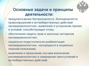 Основные задачи и принципы деятельности: предупреждение беспризорности, безн