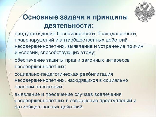 Основные задачи и принципы деятельности: предупреждение беспризорности, безн...