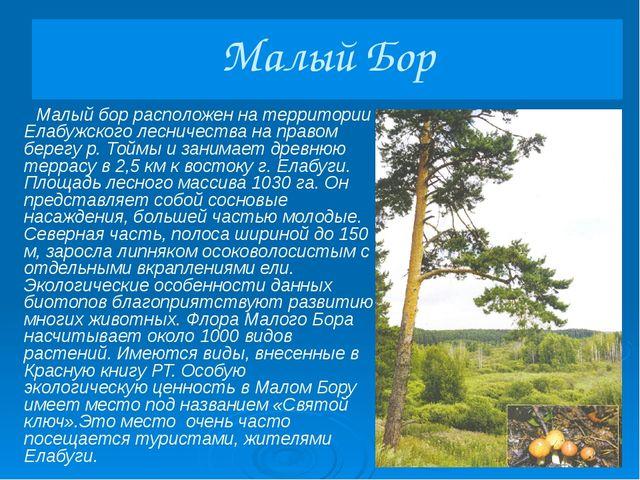 Танаевский лес Танаевский лес располагается на материковом берегу р. Камы и з...