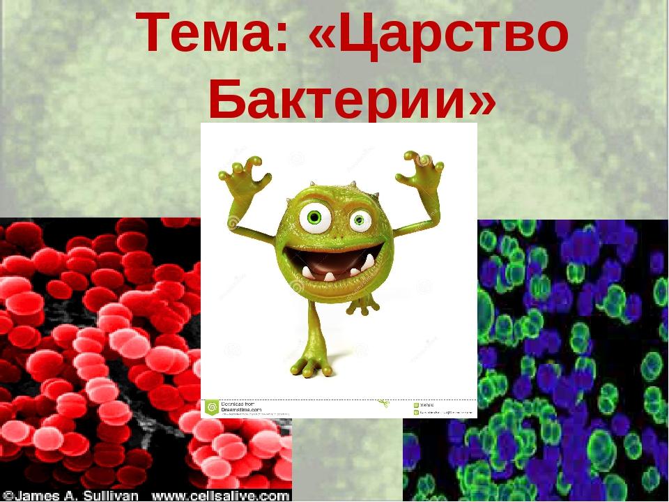 Тема: «Царство Бактерии»
