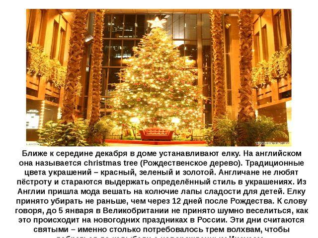 Ближе к середине декабря в доме устанавливают елку. На английском она называе...