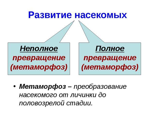 Развитие насекомых Неполное превращение (метаморфоз) Полное превращение (мета...