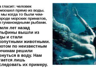 Она гласит: человек произошел прямо из воды. Т.е. мы когда то были чем-то вро