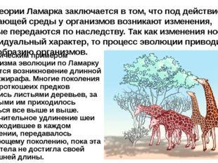Классическим примером механизма эволюции по Ламарку является возникновение дл