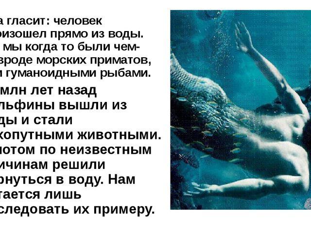 Она гласит: человек произошел прямо из воды. Т.е. мы когда то были чем-то вро...