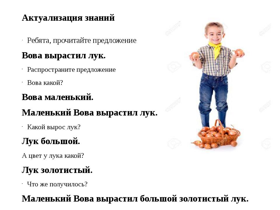 Актуализация знаний Ребята, прочитайте предложение Вова вырастил лук. Распрос...