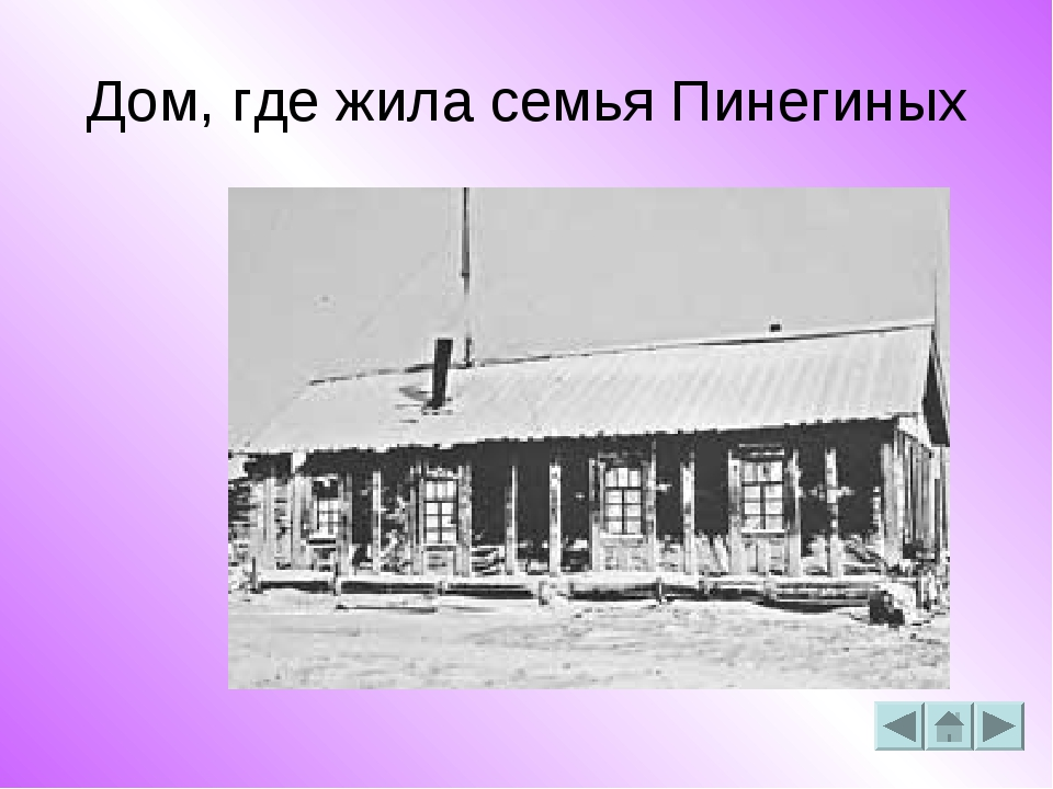 Дом, где жила семья Пинегиных
