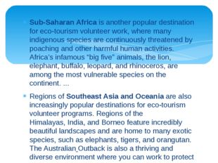 Sub-Saharan Africa is another popular destination for eco-tourism volunteer w
