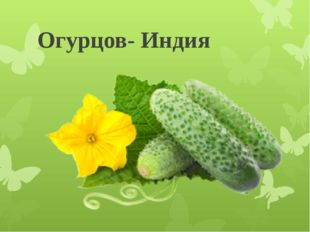 Огурцов- Индия