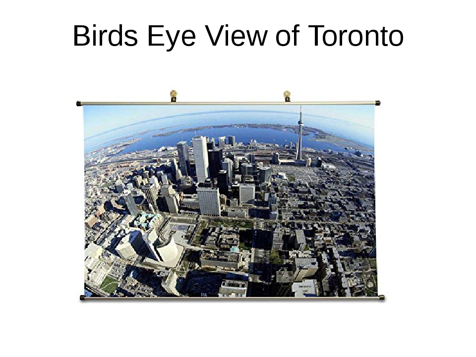 Birds Eye View of Toronto