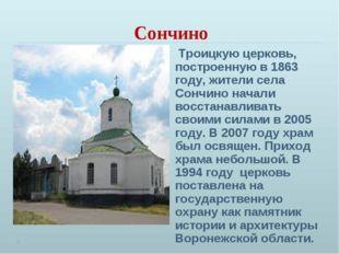 Сончино Троицкую церковь, построенную в 1863 году, жители села Сончино начали
