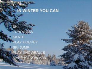 IN WINTER YOU CAN SKI TOBOGGAN SKATE PLAY HOCKEY SKI JUMP PLAY SNOWBALLS MAKE