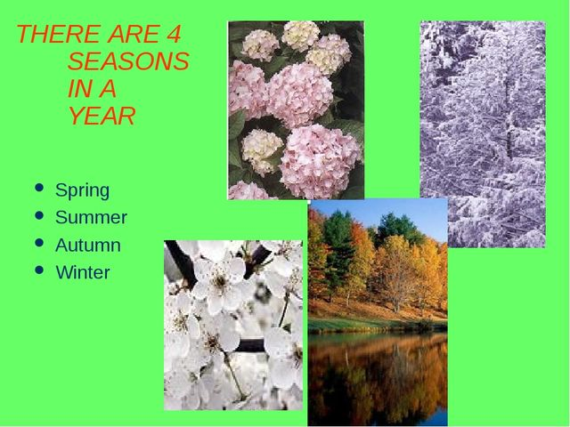 THERE ARE 4 SEASONS IN A YEAR Spring Summer Autumn Winter