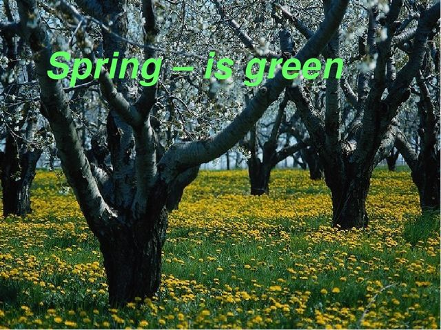 Spring – is green