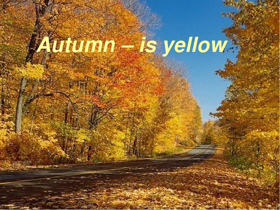 Autumn – is yellow