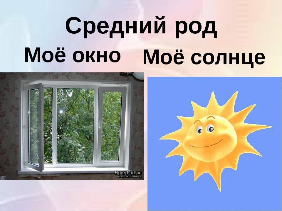 Средний род Моё окно Моё солнце