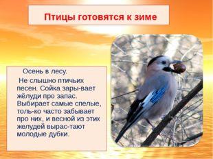 Птицы готовятся к зиме Осень в лесу. Не слышно птичьих песен. Сойка зары-вае