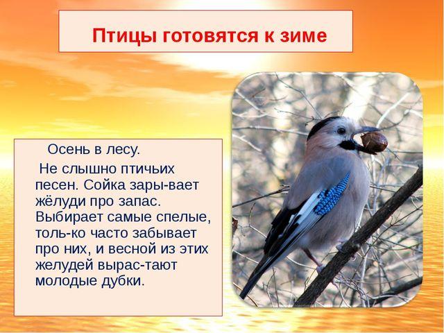 Птицы готовятся к зиме Осень в лесу. Не слышно птичьих песен. Сойка зары-вае...