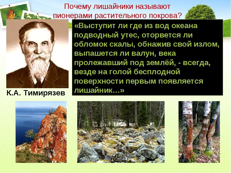 «Выступит ли где из вод океана подводный утес, оторвется ли обломок скалы, об...