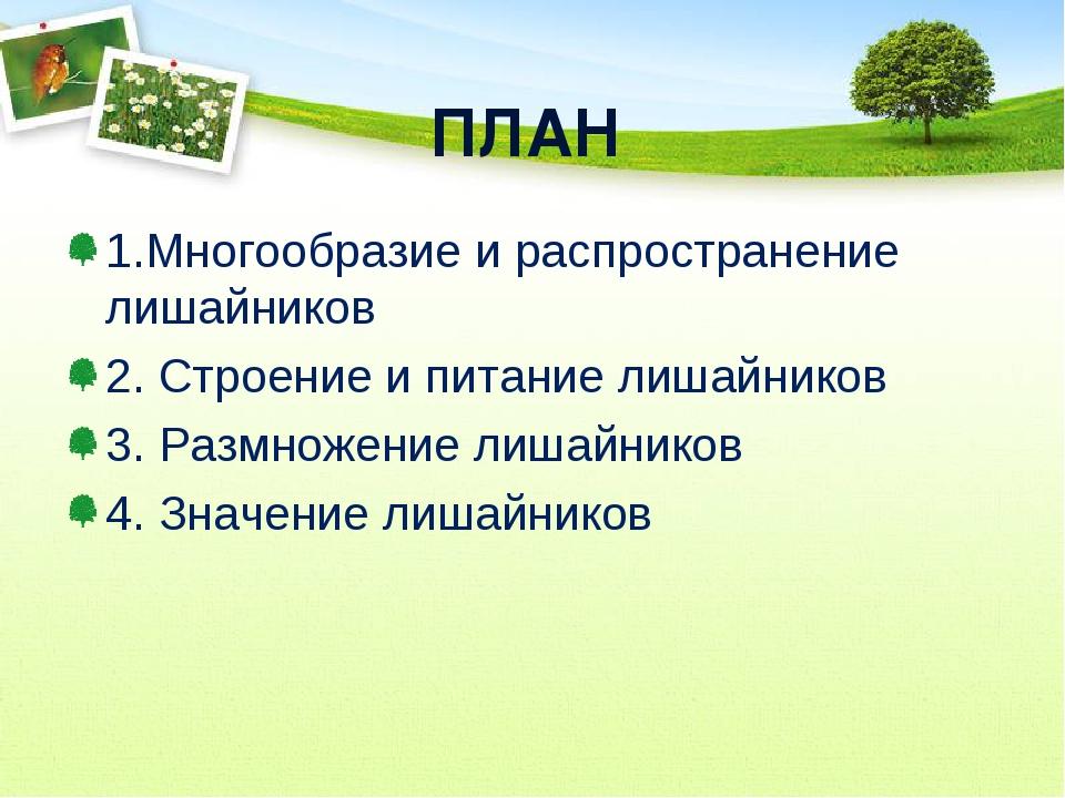 ПЛАН 1.Многообразие и распространение лишайников 2. Строение и питание лишайн...