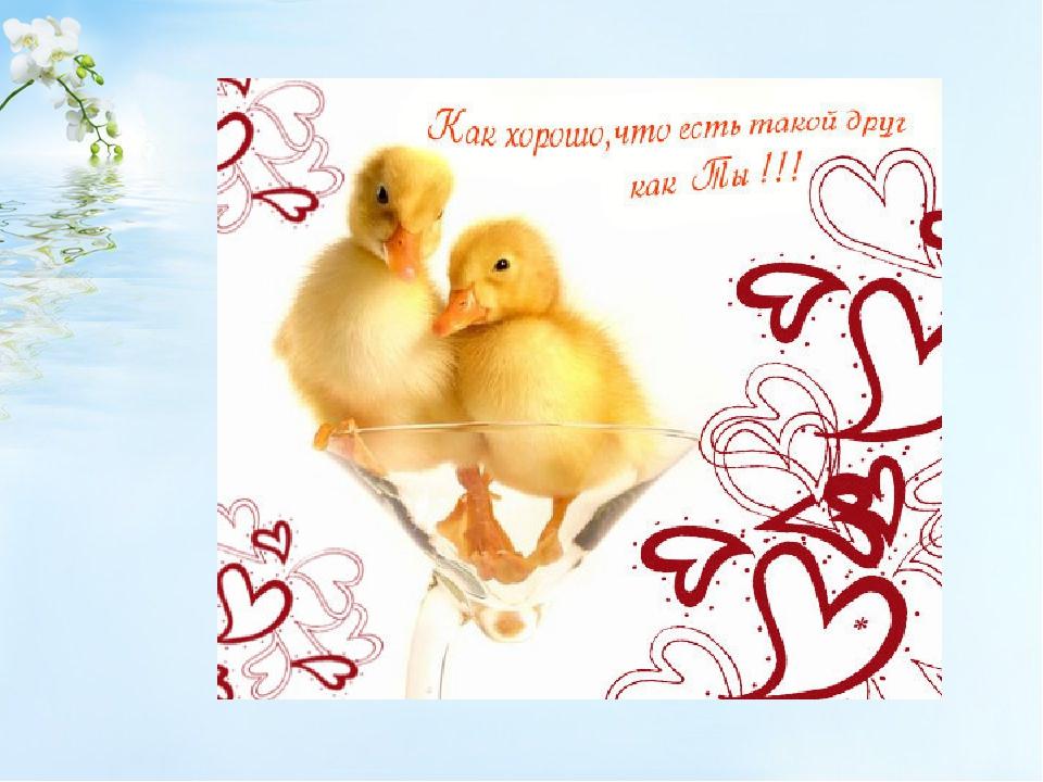 Для, открытка как хорошо что есть друзья