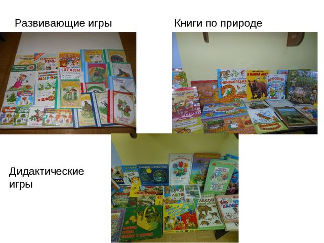 Книги по природе Развивающие игры Дидактические игры