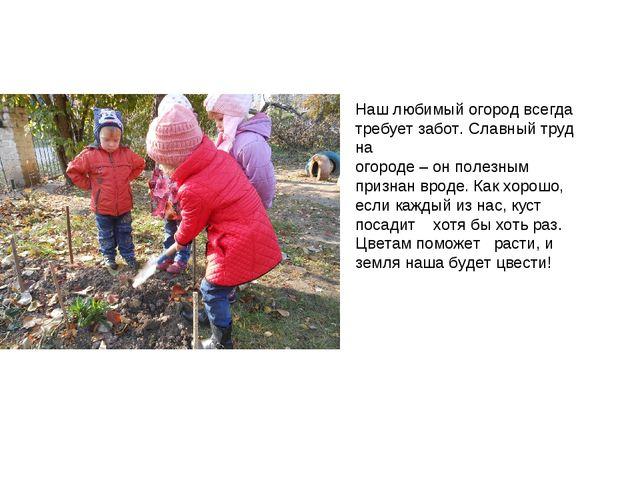 Наш любимый огород всегда требует забот. Славный труд на огороде – он полезны...